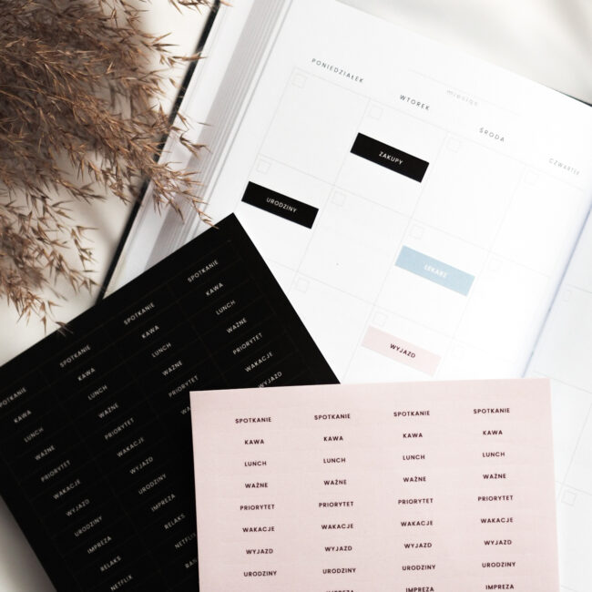 MEGA Zestaw naklejek do planera - napisy i kropki