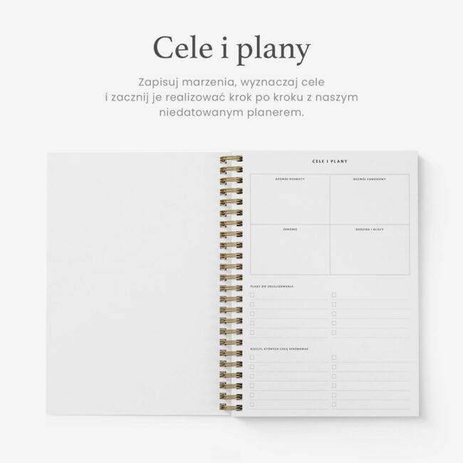 Wyznaczanie celów planer